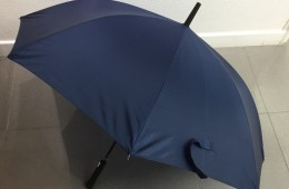 OTH-024 Umbrella